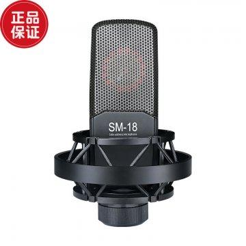 Takstar/得胜 SM-18电容麦克风
